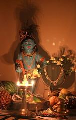 Vishu Kani (3) (s4's world) Tags: vishu vishukani konnapoo