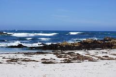 2012-04-28 Big Sur 008 Monterey, Seventeen-Mile-Drive