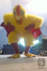Chicken suit 55 (ChickenJay) Tags: bird chicken yellow happy zoo costume transformation mask wing beak suit talon hen birdbrain toony
