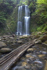 Beachamp Falls, Otways (mthomson34) Tags: waterfall falls otways beachamp