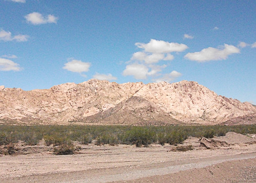 <p>The Argentine sector we visit is mainly desert, but with a rich and surprising avifauna. But part of the fun is how pretty the colors of the mountains and valleys are, it is like Utah or Northern Arizona at times. </p>