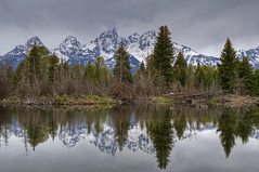 Sedate (dbushue) Tags: trees mountains nature water reflections spring nikon cloudy wyoming grandtetonnationalpark coth gtnp supershot schwabacherslanding naturesgarden absolutelystunningscapes d7000 damniwishidtakenthat flickrclassique coth5 photocontesttnc12 dailynaturetnc12