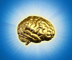 A Bright Idea (Writer5678) Tags: inspiration smart gold idea golden thought brain intelligence human mind brains thinking genius brilliant radiant cognition brainpower
