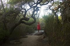 (Lucille Kanzawa) Tags: selfportrait aruba autorretrato casibarirockformations lucillekanzawa