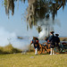 Fort Frederica National Monument 8