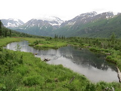 Eagle River Nature Center (stinkenroboter) Tags: alaska eaglerivernaturecenter