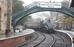 Sir Nigel Gresley (deltrems) Tags: york public station train track north transport railway steam moors preserved sir nigel nymr gresley