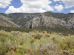 ORNG2075 (David J. Thomas) Tags: humboldtnationalforest forest mountains backroads ely nevada nv travel vacation