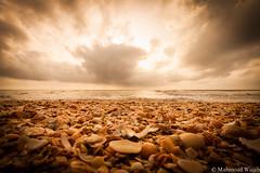Summer days (DriftingHorus) Tags: beach sea morocco visitmorocco travel traveller wide angle sun rise pebbles sand nature
