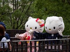P7230607.jpg (mono0x) Tags:       danielstar greeting hellokitty kittywhite puroland sanrio    jp