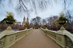 Central Park-Bow Bridge, 01.09.16 (gigi_nyc) Tags: centralpark winter nyc newyorkcity bowbridge