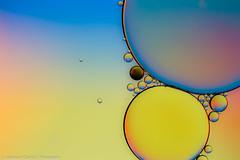 Light and shape (Alexander Czapka) Tags: macro makro macrodreams light shape abstract color colour creation gestaltung form formen