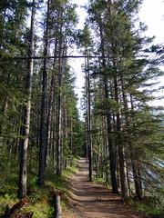 Banff NP - Lake Minnewanka (Kwong Yee Cheng) Tags: alberta banffnp canada lakeminnewanka