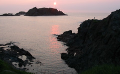 Land Ahoy! (Robert Saucier) Tags: terreneuve newfoundland mer ocan ocean sea atlantique atlantic sunset coucherdesoleil noir black rose pink soleil sun 1313185