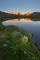 Gran Paradiso (Maurizio Fontana) Tags: colle nivolet lago lake riflesso reflection passo tramonto sunset granparadiso colledelnivolet nikon d800 leefilters