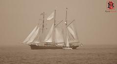 04487-14 de agosto de 2016 (Tres-R) Tags: spain espaa galicia corua barcos ship oceanos ocean tresr rodolforamallo sonyrx10 landscape paisaje airelibre