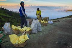 WB1A1609-296 (Lauren Philippe) Tags: du11juinau25juin2016 indonesia indonsie java kalahijen volcan souffre sulphur