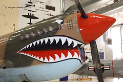 1944 Curtiss P-40N Warhawk 447084 Miss Josephine N999CD (Gerald (Wayne) Prout) Tags: 1944curtissp40nwarhawk447084missjosephinen999cd noseart art curtiss p40n warhawk 447084 miss josephine n999cd palm springs air museum located international airport riverside county california usa prout geraldwayneprout canon canoneos40d palmspringsairmuseum palmsprings palmspringsinternationalairport missjosephine riversidecounty