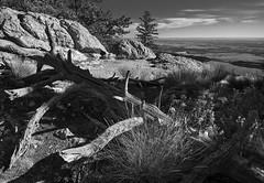 (LuminousWest) Tags: sigma dp dp0 dp0q quattro sigmaquattro foveon landscape black white bw monochrome blackwhite blackandwhite dp0q0634 luminouswest luminous west x3f