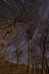 Tree Trails (Joey Hodgson *lost everything, now re-uploading*) Tags: sonya55 sony sonycamera trees trails stars startrails photography joeyhodgsonphotography landscape landscapephotography isleofskye skye scotland