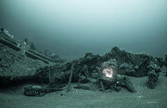 Still on (garrelf) Tags: outdoor diving jutland northsea nordsee diver scuba schiffswrack kriegsgrab seekrieg see weltkrieg skagerrak battle warships monochrome trimix techdiving technical technisches tauchen taucher