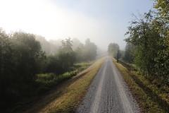 MTB-Tour (flo-wa) Tags: berg mountain biking nebel fog