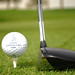 Golf-2146