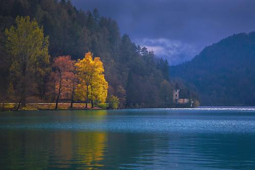 Bled,Slovenia (David Butali) lake tree forest landscape lago island view slovenia bled aprile colori paesaggi bohinj pasqua lubiana mygearandme