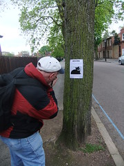 Cat found ( Lee J Haywood) Tags: photographer lostcat treesign