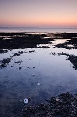 Oysters at Hampton. (Bobbybinz) Tags: ocean new sunset sea england sky seascape color colour beach water photography bay kent nikon europe estuary herne infocus highquality skytone d7000