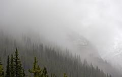 Cloudy Mountain Valley (DCZwick) Tags: trees cloud mist mountain canada fog forest rockies alberta banff rockymountains banffnationalpark morainelake canadianrockies banffpark mttemple da50135 pentaxart