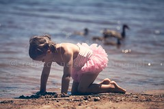 (Rebecca812) Tags: family summer vacation portrait sunlight lake cute beach nature water girl childhood wisconsin children fun happy concentration kid sand ballerina day child play sweet candid wildlife daughter ducks peaceful happiness calm dirty pigtails sideview handsandknees tranquil tutu northwoods brownhair swimmingsuit fiveyears leisureactivity reallifemoment canon5dmarkii rebecca812