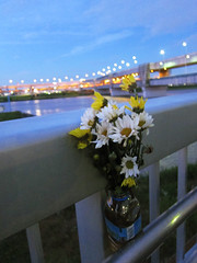 Riverside Memorial (Sublight Monster) Tags: bridge sky flower japan river tokyo evening canal memorial   arakawa adachi   nightonearth