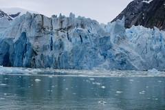 DSC02405 (annekuolukito) Tags: cruise alaska arms arm glacier 2012 dawes endicott dawesglacier endicottarm endicottarms
