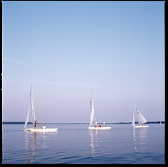 Sailboat Races, St. Michaels Maryland (Shawn Hoke) Tags: 120 6x6 film mediumformat maryland slidefilm hasselblad sailboats stmichaels hasselblad501cm zeissplanar80mmf28 fujiprovia100 stmichaelsmaryland sailboatraces epsonv500 shawnhoke believeinfilm