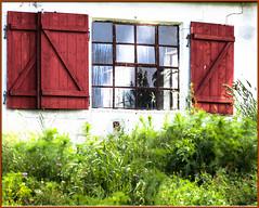 Abandoned (outdoorstudio) Tags: abandoned window denmark skandinavien shutters scandinavia danmark vindue bornholm forladt skodder ©jettewfrederiksen wwwoutdoorstudiodk
