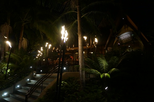 """Trader Sam's Enchanted Tiki Bar • <a style=""""font-size:0.8em;"""" href=""""http://www.flickr.com/photos/28558260@N04/28911718856/"""" target=""""_blank"""">View on Flickr</a>"""