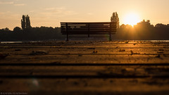 I pass this place every morning and every afternoon (katrin glaesmann) Tags: bank steg maschsee sonnenaufgang hannover bench wood sunrise low hanovergermany