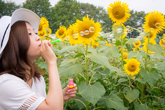 Young female blowing soap bubbles in sunflower field (Apricot Cafe) Tags: asianethnicity canonef1635mmf28liiusm japan kanagawa enjoy happiness nature oneperson outdoor refresh strawhat summer sunflower traveldestinations vacation walking weekendactivities woman youngadult