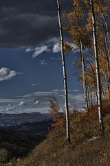 Autumn Leaves Swirl - Herbstlicher Bltterwirbel (W_von_S) Tags: autumn herbst bltter leaves wirbel swirl rockymountains usa us wvons werner sony outdoor mountains berge clouds wolken landscape landschaft