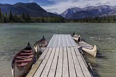 Hector waterfront Bow Valley Park (John Andersen (JPAndersen images)) Tags: alberta bowvalleypark campchiefhector canoes kananaskis mountains ymca