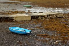 Marea baja (athelas_2) Tags: loch carron barcas algas escocia plockton highlands scotland