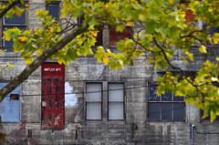 The Antler Apartments II (James_D_Images) Tags: antlerapartments bellingham washingtonstate abandoned empty red door boarded boardedover broken windows weathered old tree branches leaves fall dahlquist building 1905 historicbuilding heritage