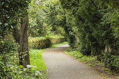 Eden Path (RagbagPhotography) Tags: cupar fife scotland view river eden burn water path walk green tree leaf leaves architecture building winding serene walkway hedge copse