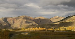 A fleeting moment (alideniese) Tags: jacksonhole wyoming usa landscape mountains panoramic sunshine autumn fall autumnal colour color trees water river snakeriver sky clouds stormy reflection