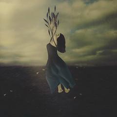 Growing Season (yelahrenae) Tags: surreal girl woman flower petal flowerpetals petals flowers purple blue violet indigo soil dirt nature landscape field brown sky flowerbuds buds bloom blooms blooming vines fine art conceptual imagination dreaming dreams daydreaming