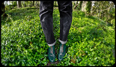 Everythings gone Green. Dr Marten 1460. (CWhatPhotos) Tags: wood fish green eye grass canon woodland out that lens boot eos prime photo focus doors foto with view angle hole image boots photos pics wide 8 pic images fisheye have jeans photographs photograph fotos 7d manual dslr sole doc marten which soles contain bouncing airwair martens f35 65mm aspherical 1460 opteka primelens cwhatphotos