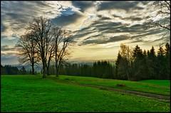 Lonesome Trees (BM-Licht) Tags: berg germany bayern deutschland bavaria abend nikon hdr oberland hgel schreiner benediktbeuern d7000