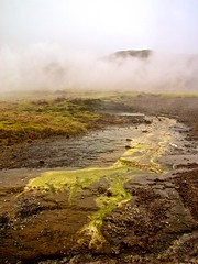 Geothermal Activity (EmreKanik) Tags: brown mist hot green water iceland stream mud steam volcanic geothermal thermal vapor goldencircle haukadalur