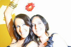 Amigo (@ntop@r) Tags: amigos flower fleur friend friendship flor gerbera amigas amis fiore amici amicizia amistad